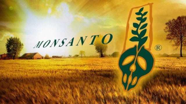 Россию завалят ГМО, или Почему ФАС дала добро на сделку Bayer-Monsanto?